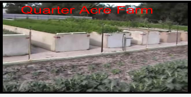 How to Make a Living Farming a Quarter Acre (VIDEO)