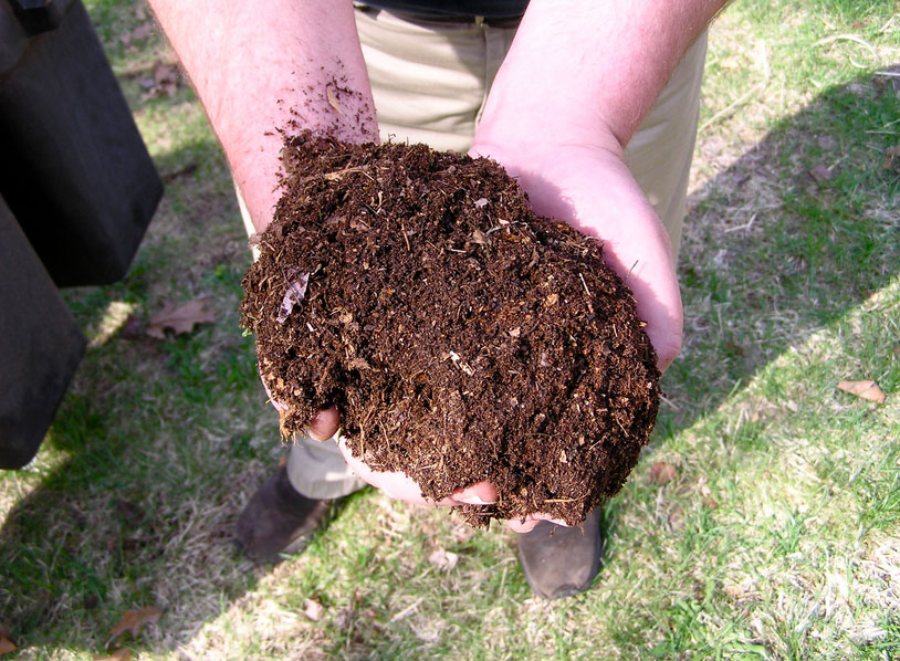 Leaf Composting Guide
