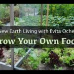New Earth Living 11: Grow Your Own Food (VIDEO)