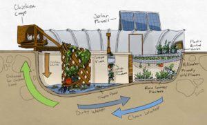 garden pool2